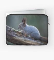 Grey as the November light. Eurasian red squirrel Laptop Sleeve