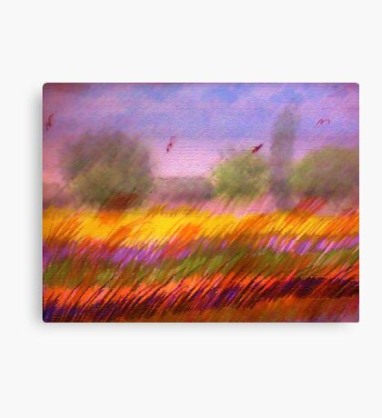 The Colorful Field, watercolor,mixed media Canvas Print