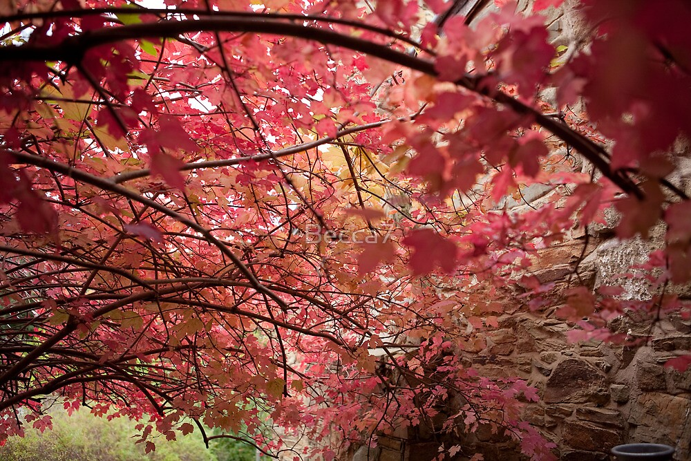 Autumn Cove 2 by Becca7