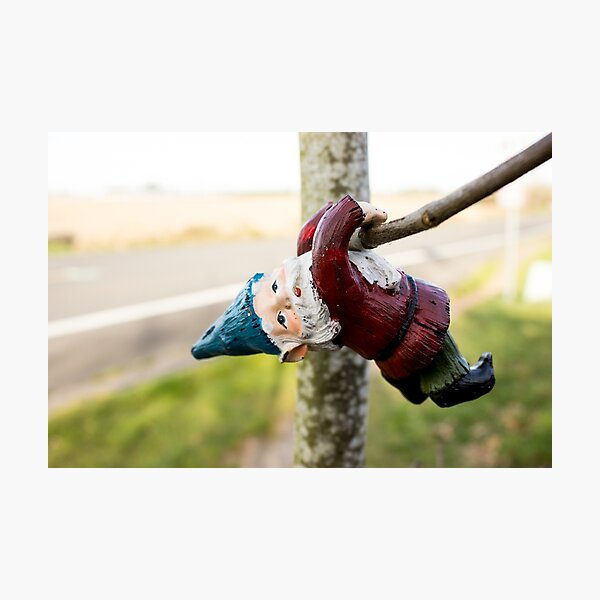 Tree Climber Gnome Photographic Print
