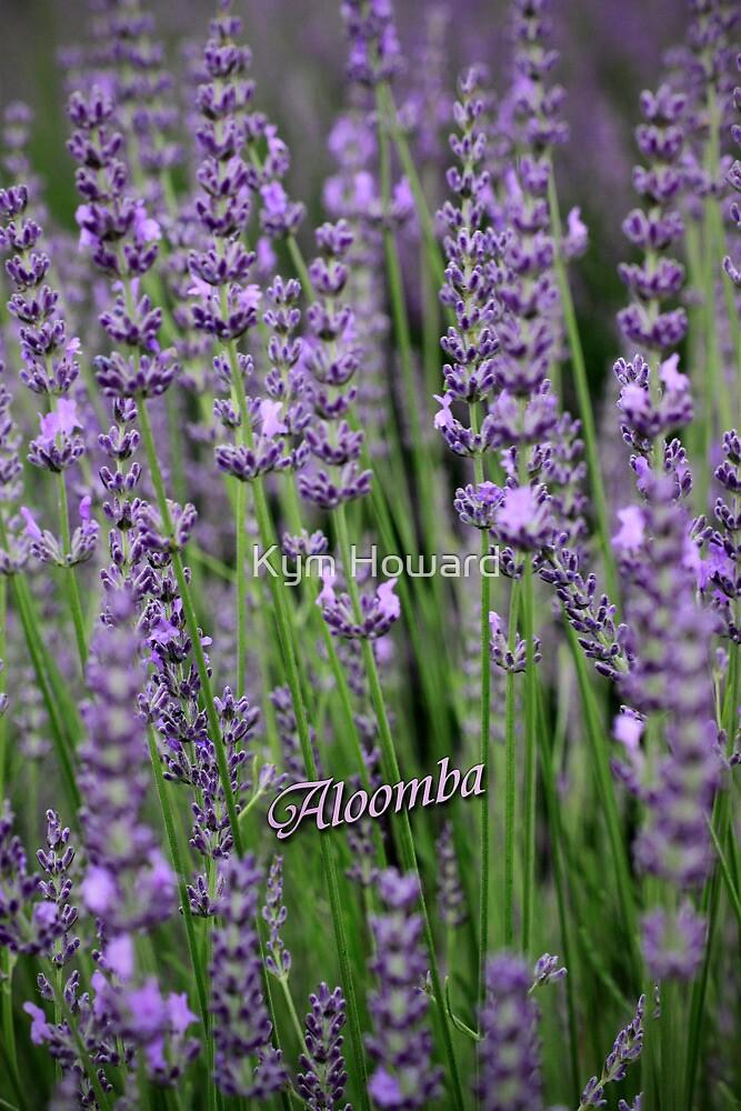Lavender Blue by Kym Howard