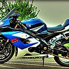 Suzuki GSX-R1000  by Mick Smith