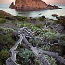 Sugarloaf Rock - Moonset by LukeAustin