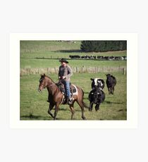 horseman being chased by cattle! Art Print