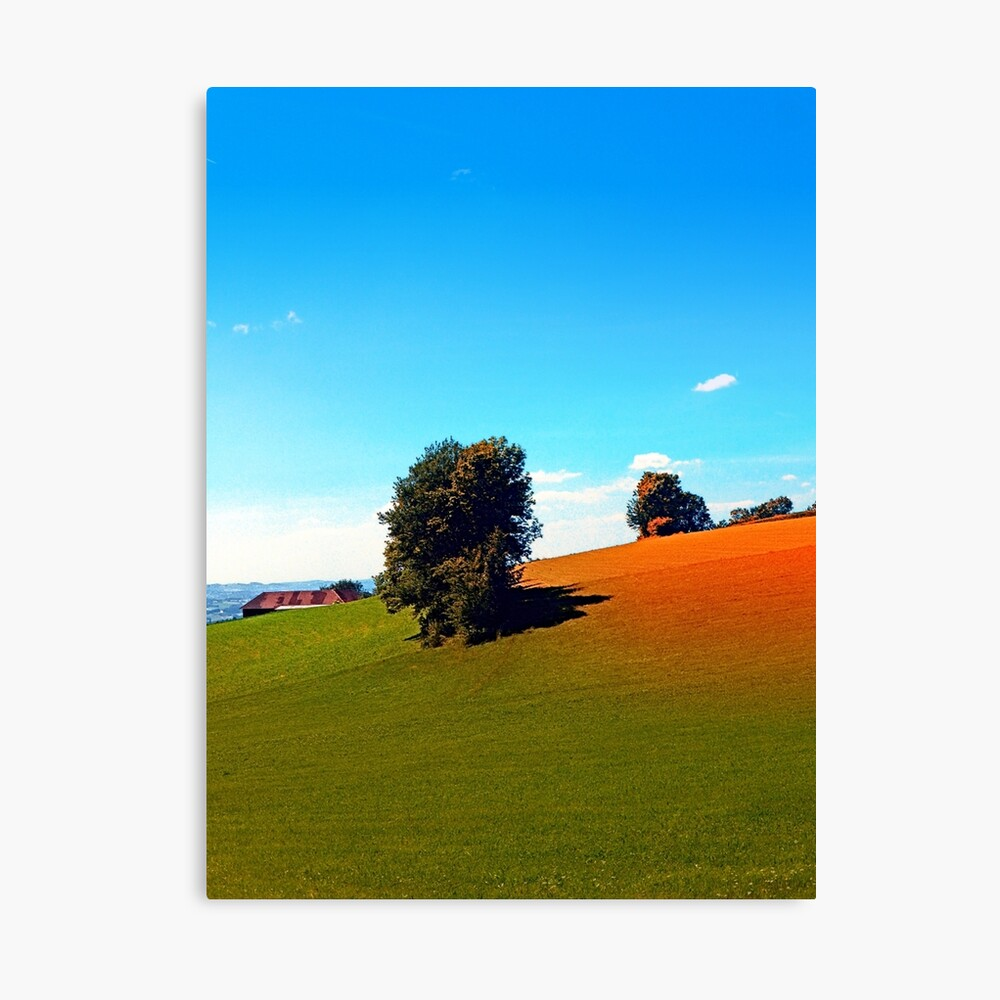 Trees, a hidden farm and fields of summer Canvas Print
