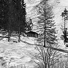 Mountain Retreat by Richard Downes