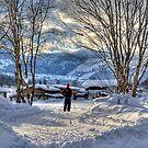 Skiers Vista by Richard Downes