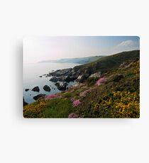 Rocky coastline near Battisborough Canvas Print