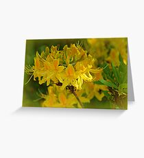 Golden Whispers Greeting Card