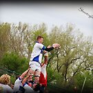lineout by shootinglife