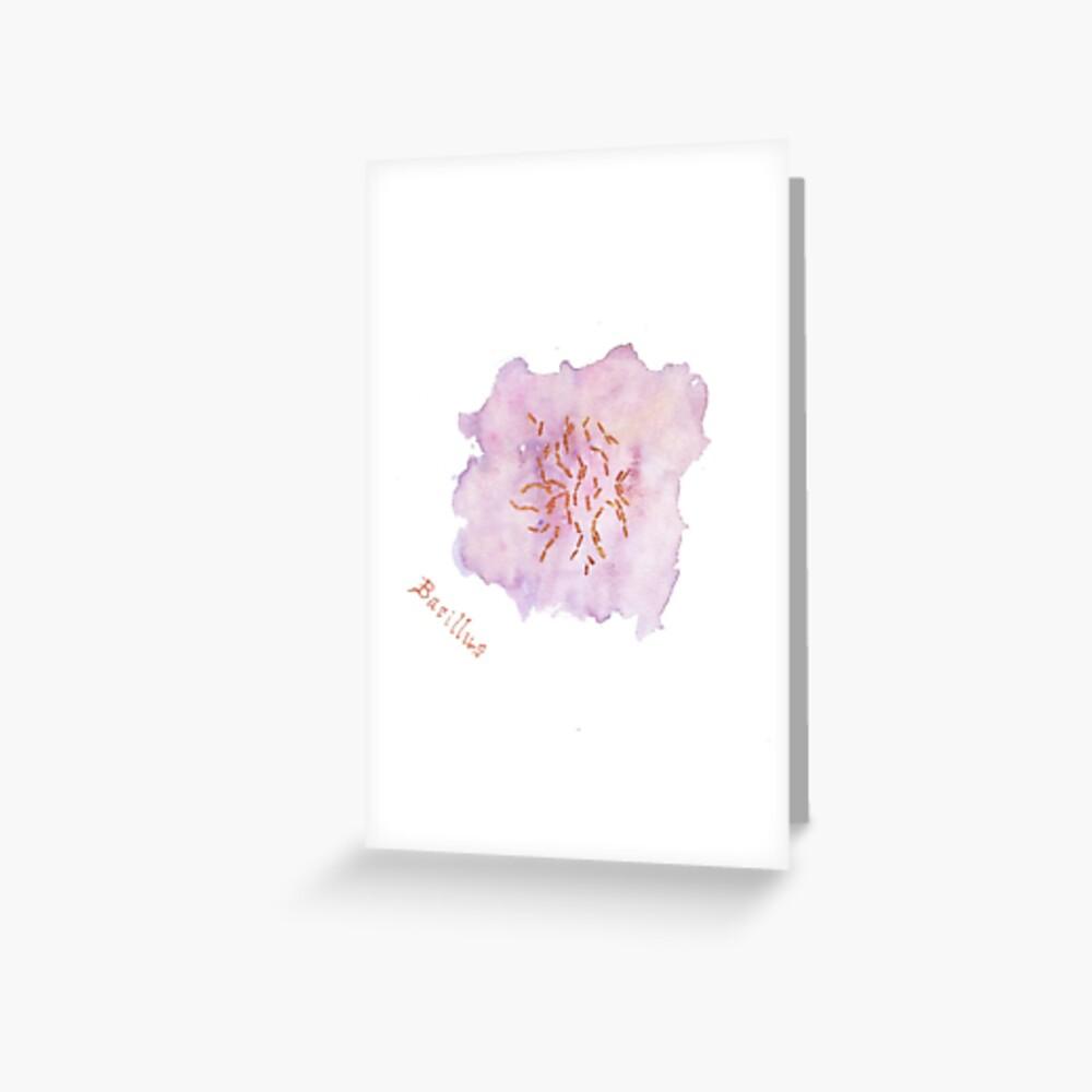 Bacillus Greeting Card Greeting Card