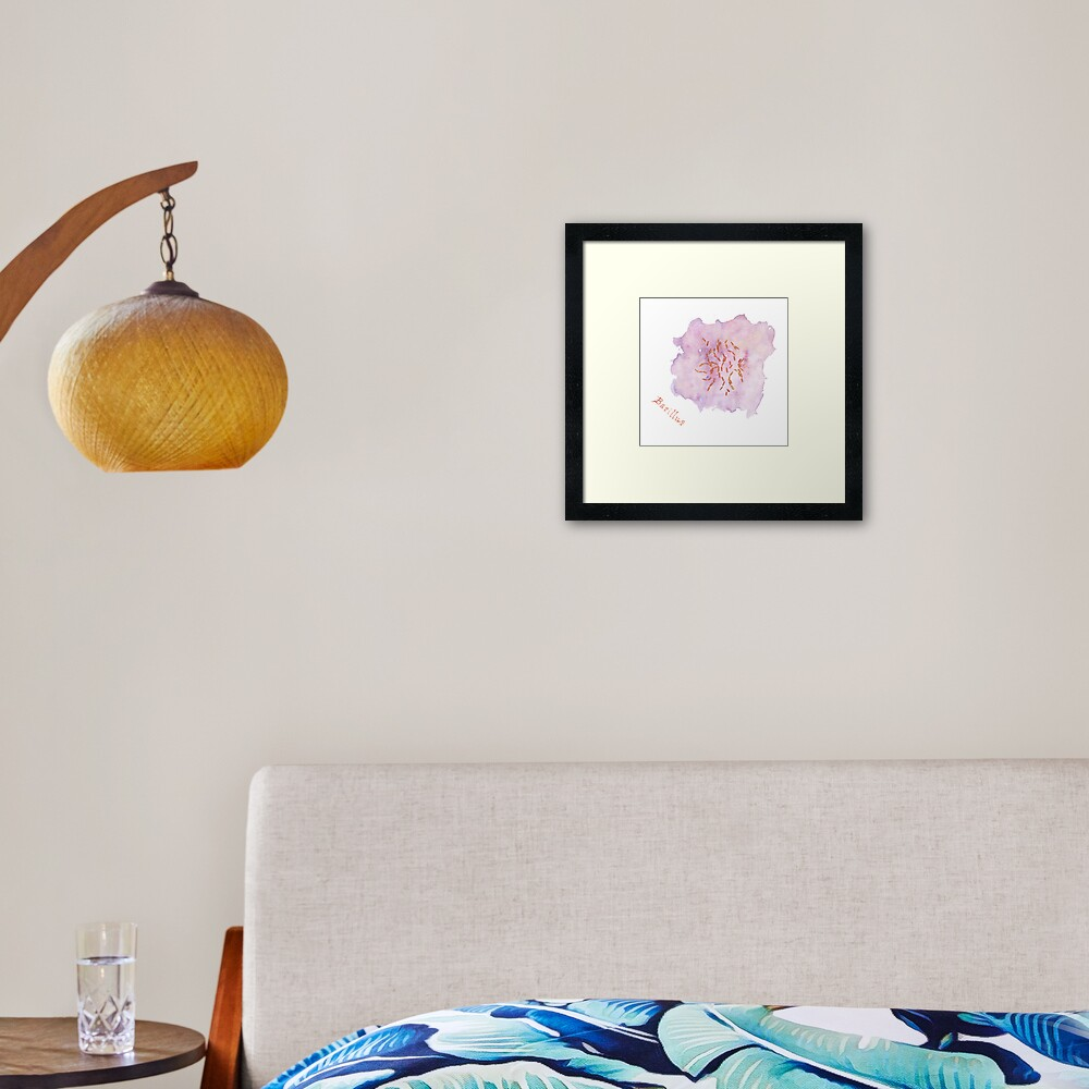 Bacillus Art Prints Framed Art Print