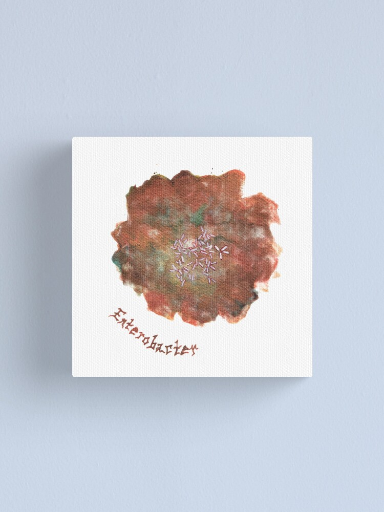 Alternate view of Enterobacter Art Prints Canvas Print