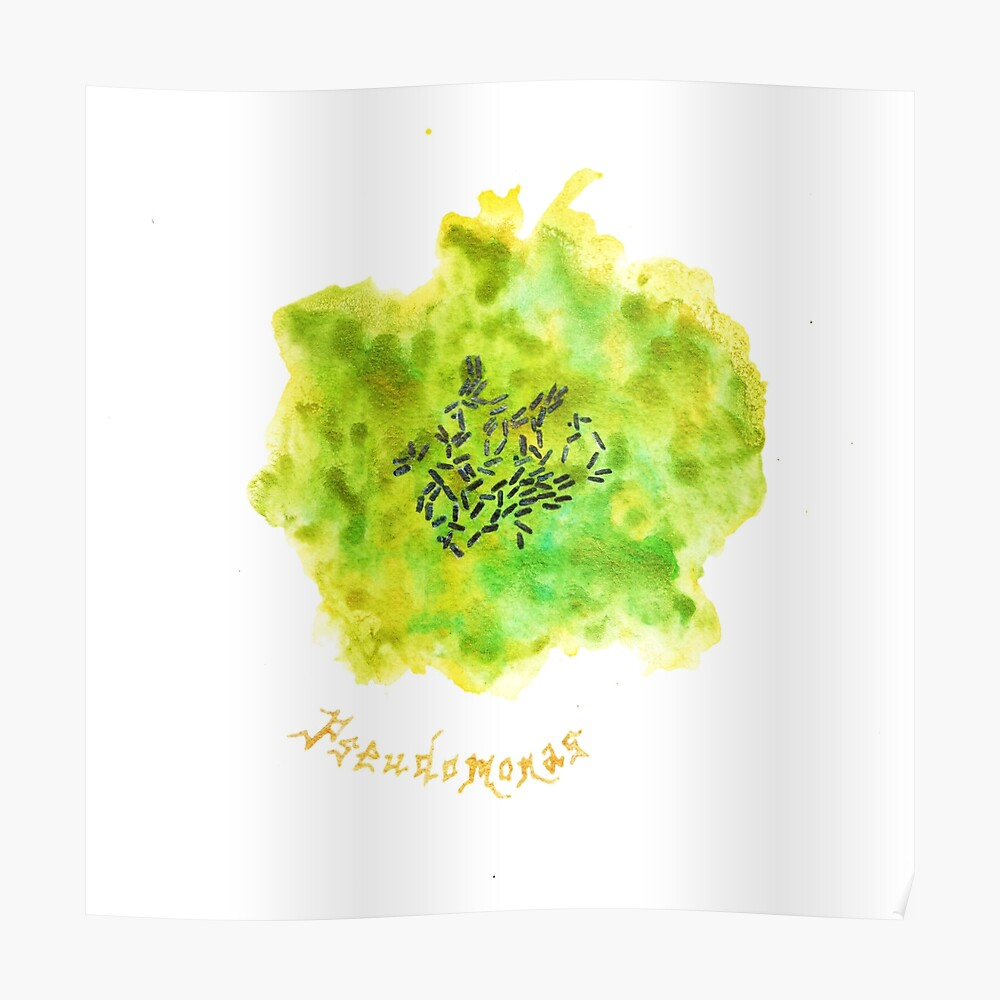 Pseudomonas Art Prints Poster