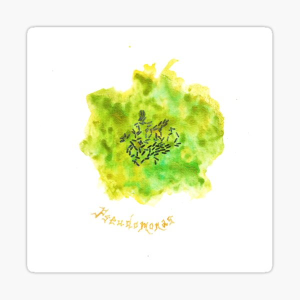 Pseudomonas Art Prints Sticker