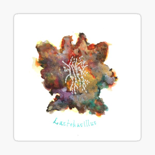 Lactobacillus Art Prints Sticker