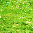 an Easter ocean of eggs!  by Allison  Flores
