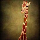 Giraffe by KBritt