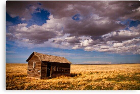 Abandoned Dreams by John  De Bord Photography
