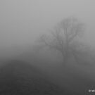 The Fog 3 by Mike Topley