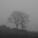 The Fog 6 by Mike Topley