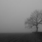 The Fog 7 by Mike Topley