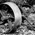 Old Wheels by Eve Parry