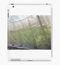 Hydroponic Vegetables iPad Case/Skin