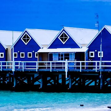 Blues by phil1509