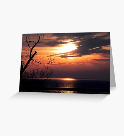 Early Morn ©  Greeting Card