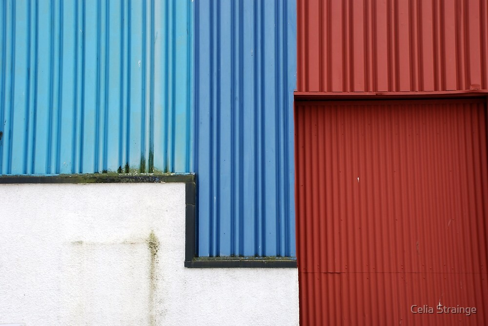 A Wall of Many Colours by Celia Strainge