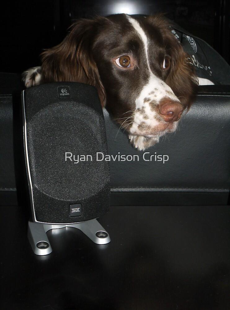 Chilling to Tunes by Ryan Davison Crisp