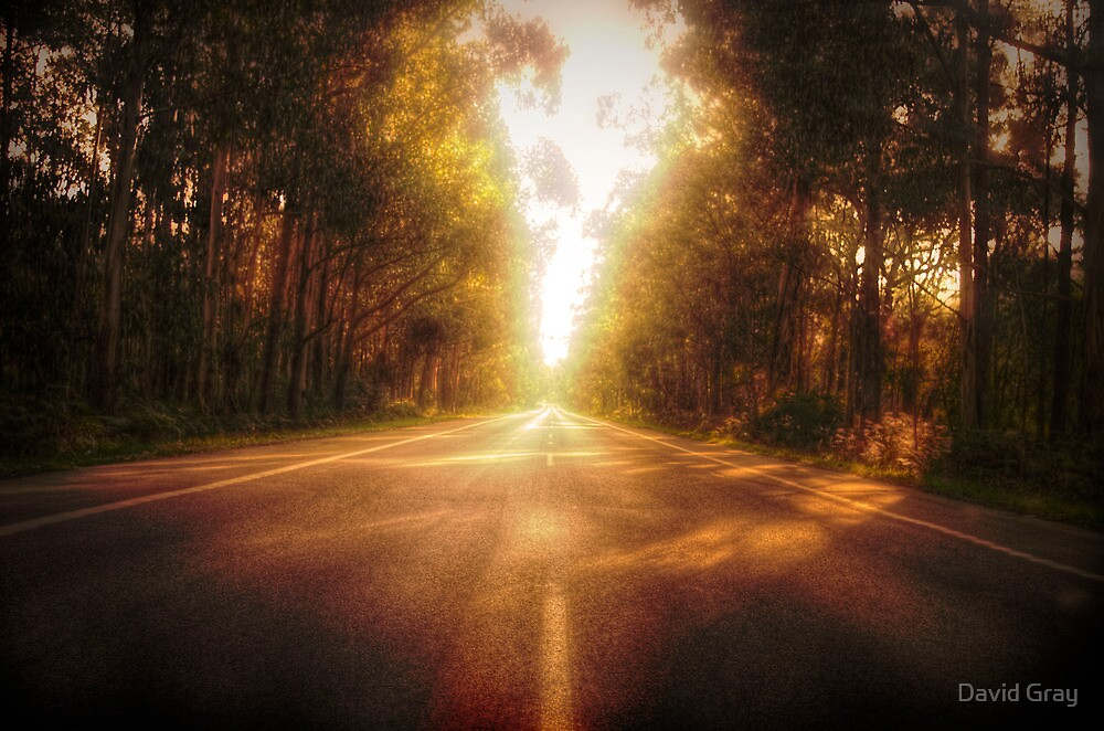 Distant Roads by David Gray