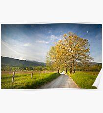 Hyatt Lane in Cade's Cove - Smoky Mountains Poster