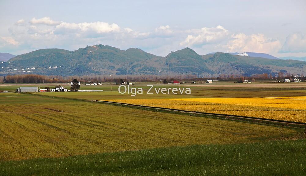 Skagit Valley by Olga Zvereva