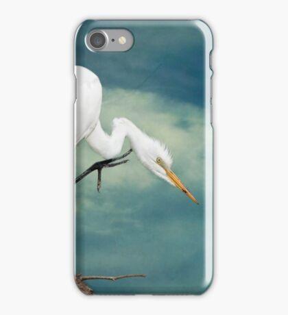 Evangeline Parish Egret iPhone Case/Skin