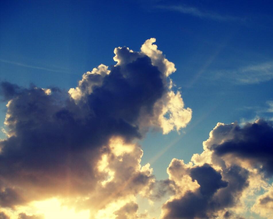 Golden rays by islefox