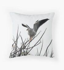 Black-Shouldered Kite Throw Pillow