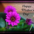 Mother's Day Is Almost here~ by Angie O'Connor