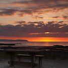 Picnic Table Sunset Portrait by kernuak