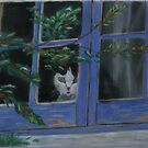 Kitty in the window by ValM