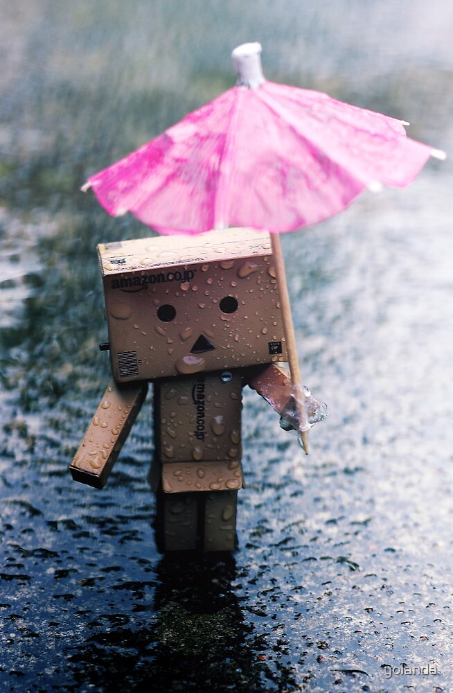 A Rainy Danbo by yolanda