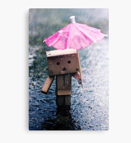A Rainy Danbo Canvas Print