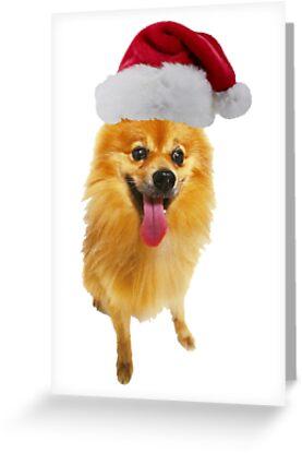 Pomeranian Christmas by CafePretzel