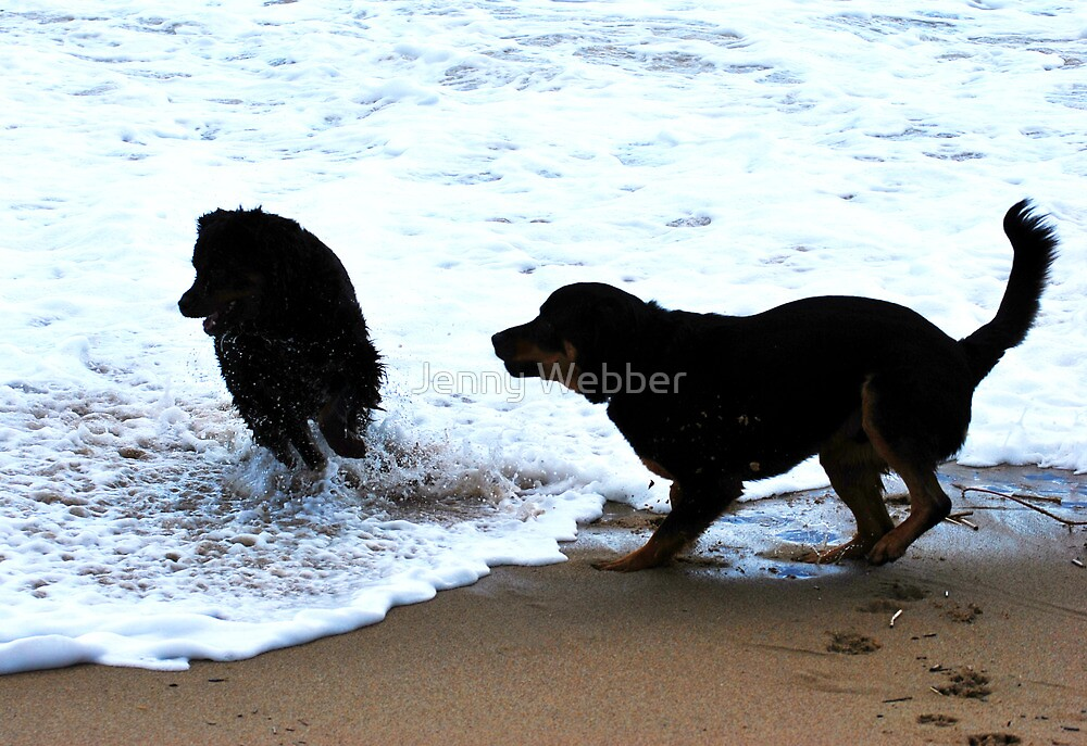 Playing in the Waves by Jenny Webber