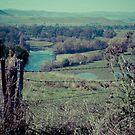 Tintaldra Valley by Jane Keats