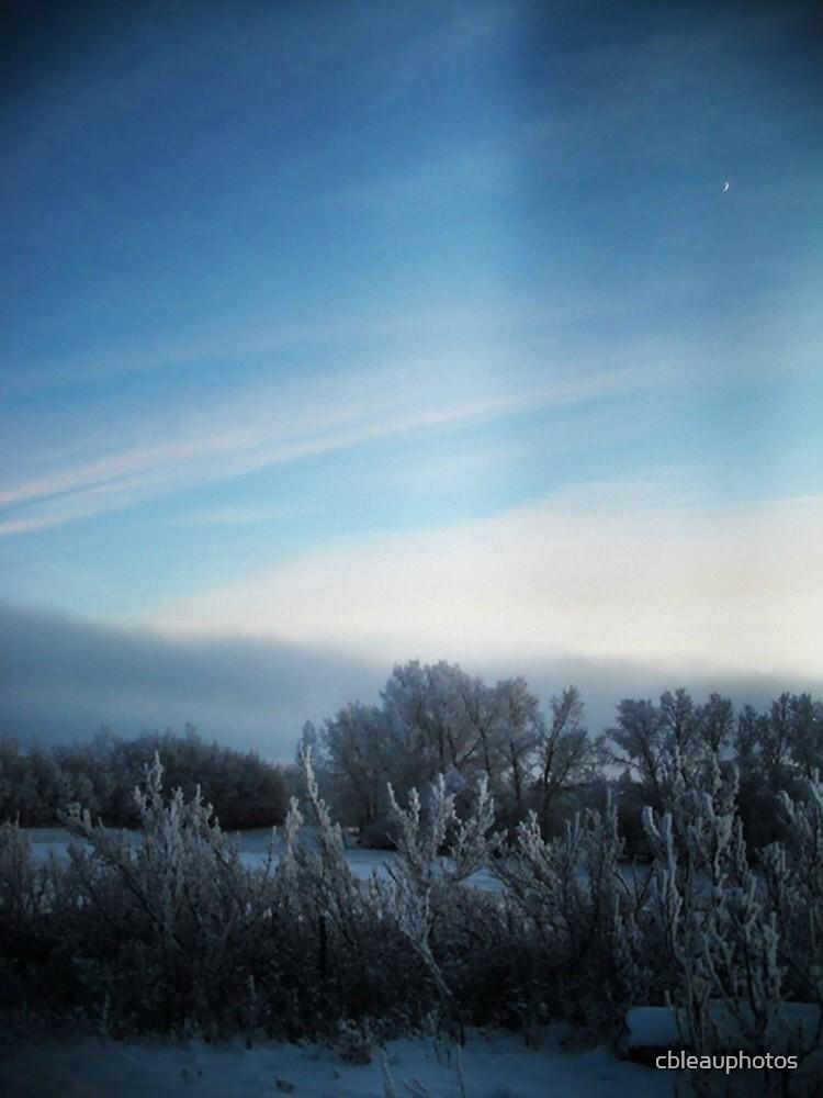 Winter by cbleauphotos