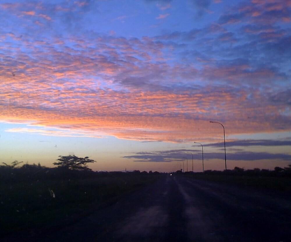 Magical sunset, Botswana, Africa by Irene  van Vuuren