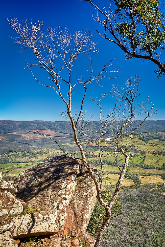 Autumn Afternoon at Cathedral Ranges by Jason Green