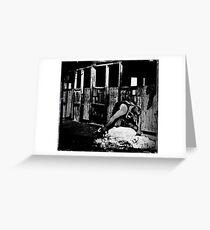 The Shearer Greeting Card